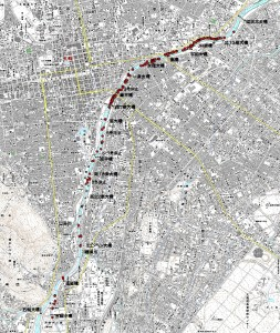 2011年豊平川サケ遡上と標識割合
