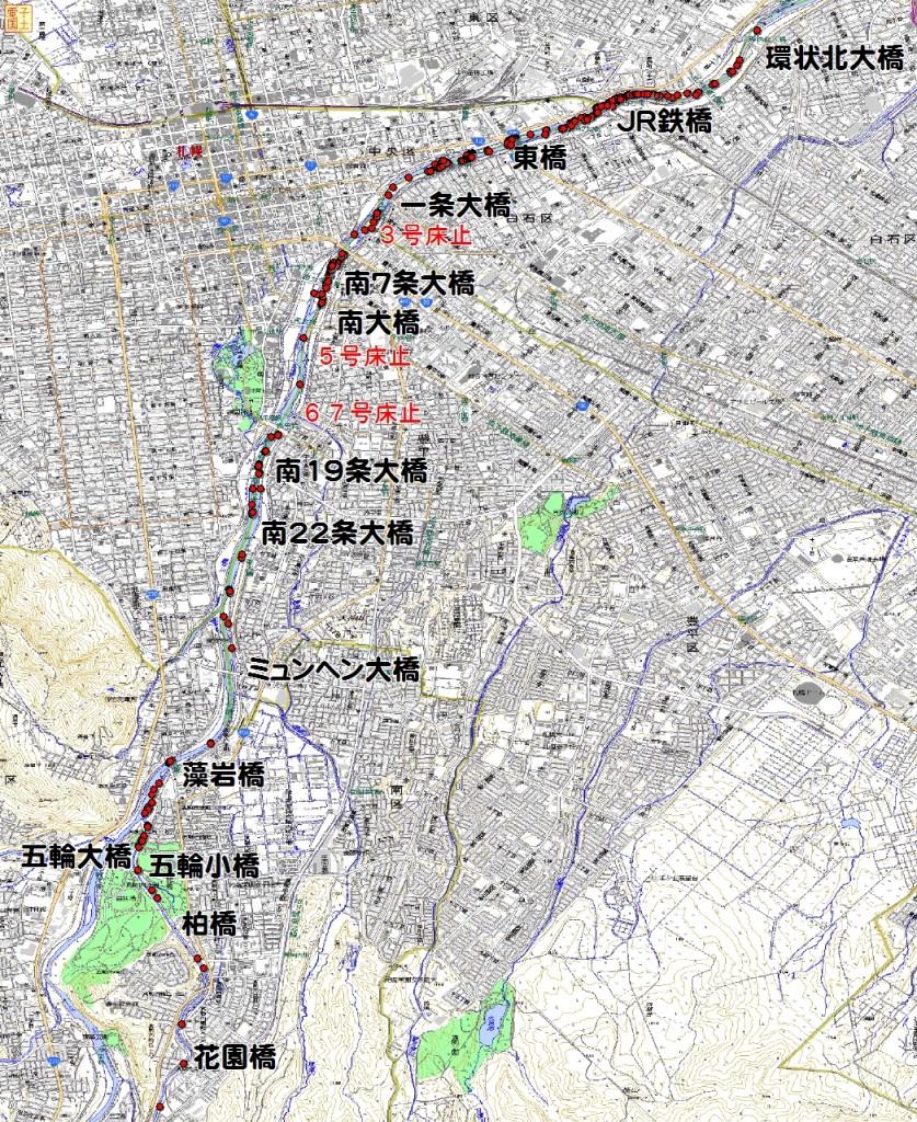 2012年度 豊平川サケ産卵床調査結果
