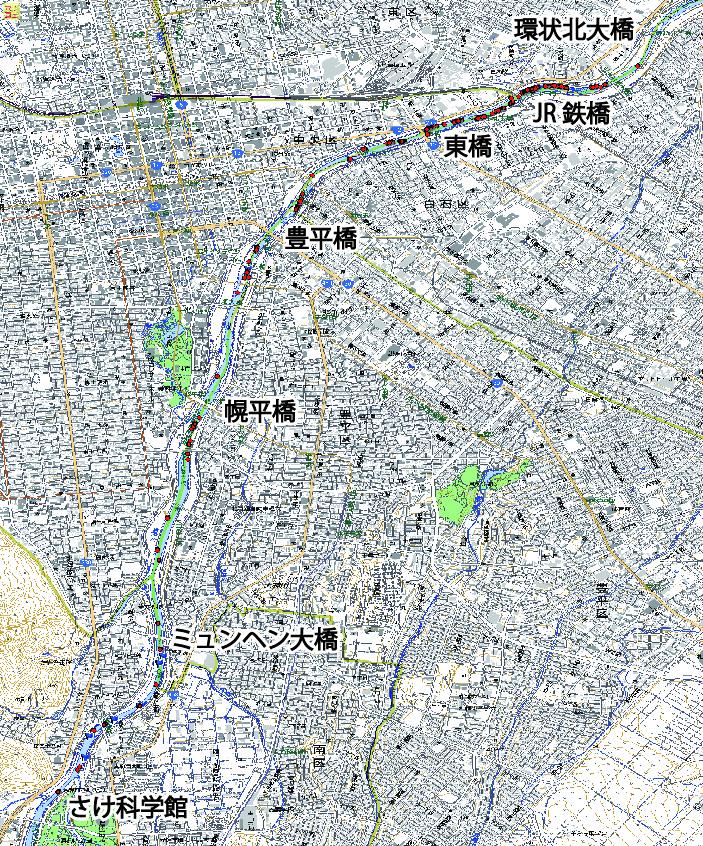 2014年度豊平川サケ産卵床調査結果