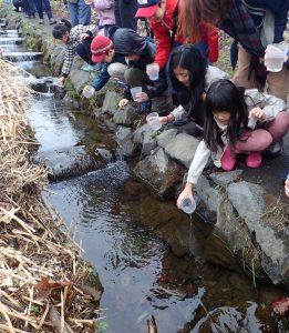 2017年サケ稚魚放流情報