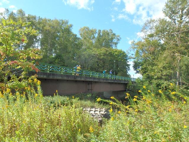 真駒内公園内の橋から観察