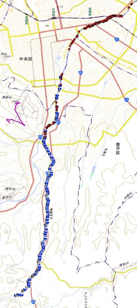 2018年度豊平川サケ産卵床調査結果