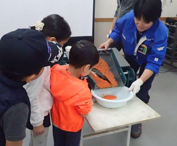 サケの採卵実習(受付終了)