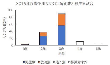 2019年度豊平川・真駒内川 サケ・サクラマス産卵床調査結果