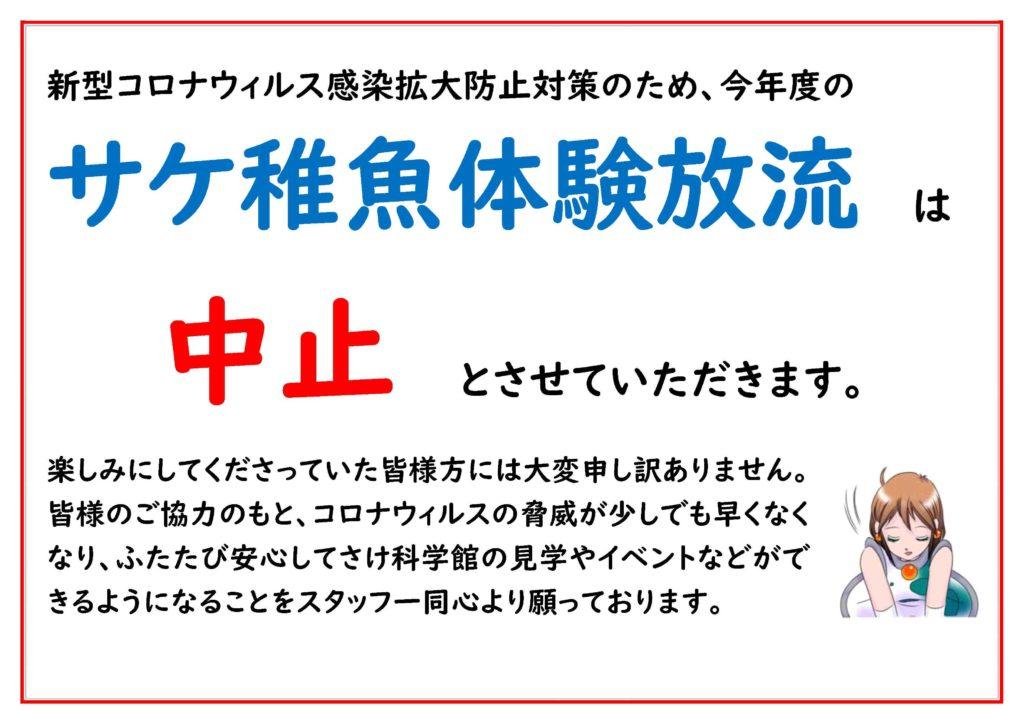 サケ稚魚体験放流中止